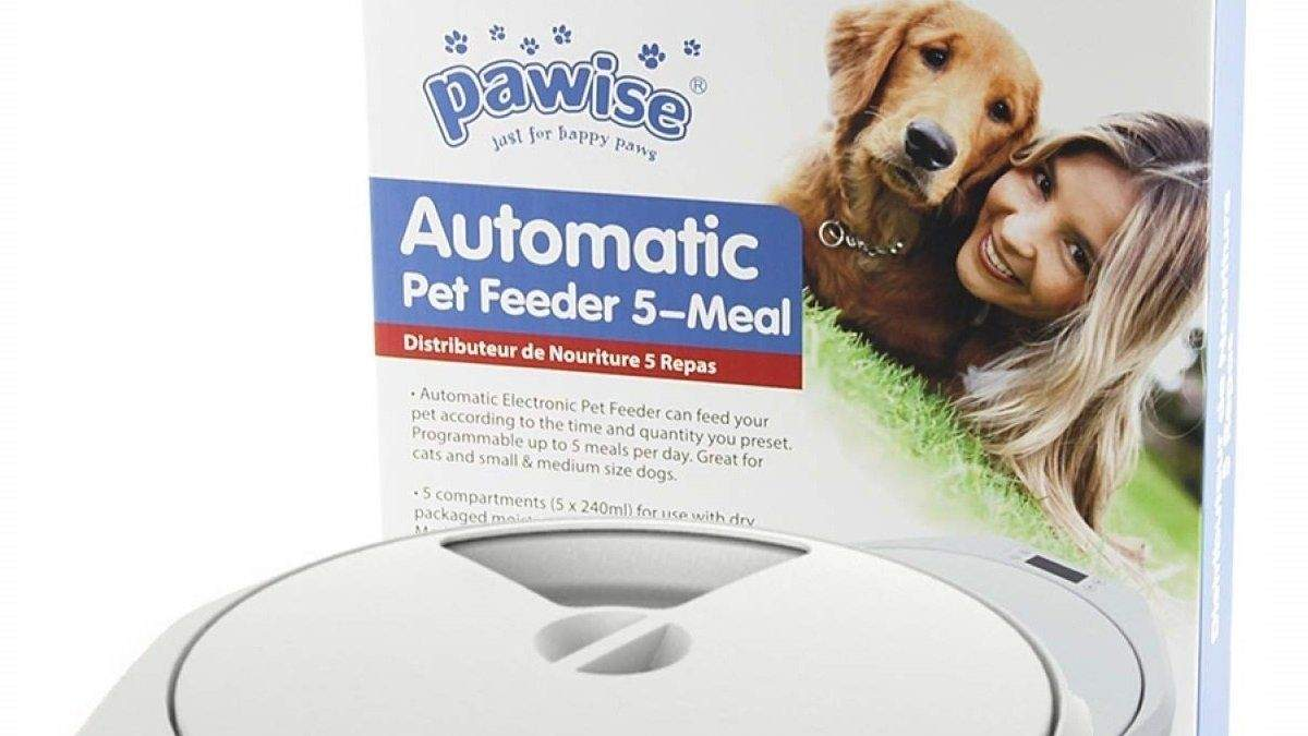 Feeders for cats and dogs with pump and timer: what to buy