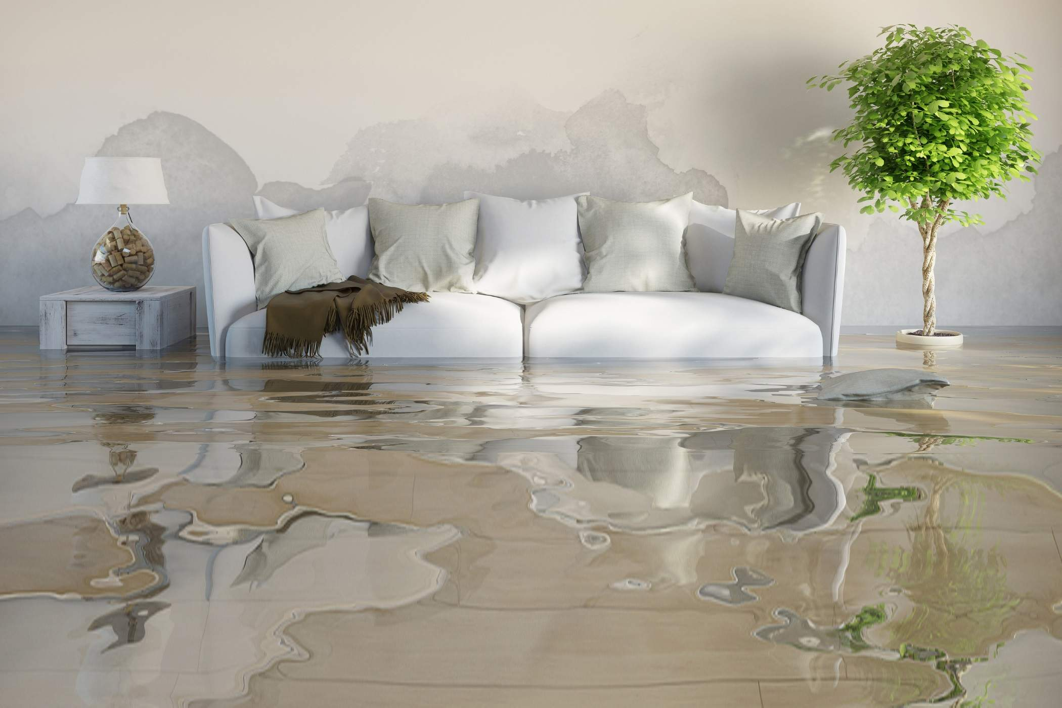 Recover The Water Damage in Three Steps: