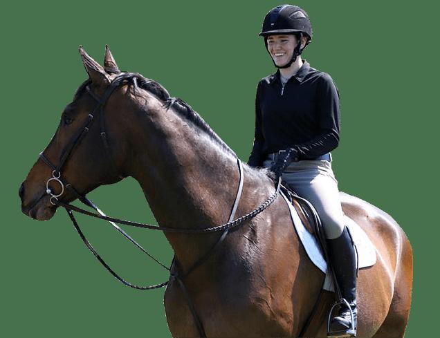 Equestrian Activities