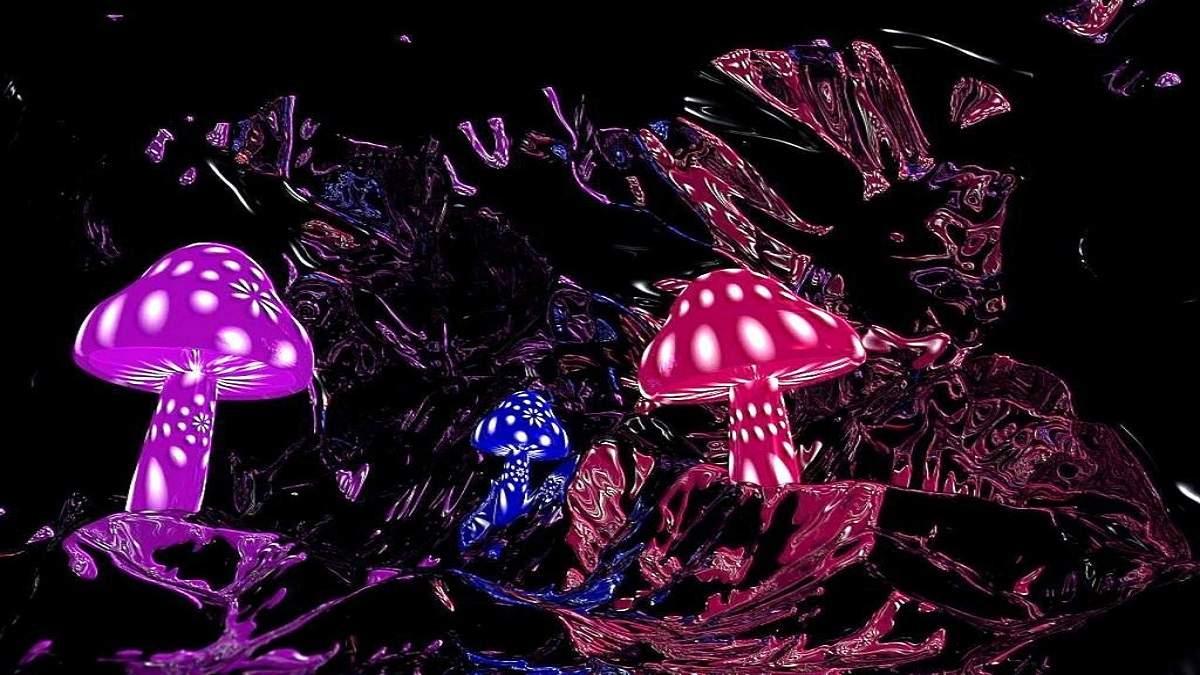 5 Amazing Magic Mushroom Benefits