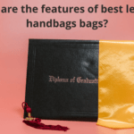 What Are the Features of Best Leather Handbags Bags?